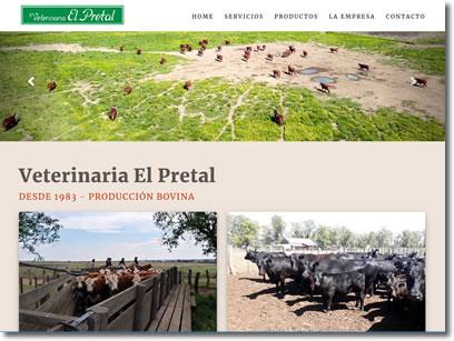 Diseño de Páginas y Sitios Web, en Santa Rosa, La Pampa